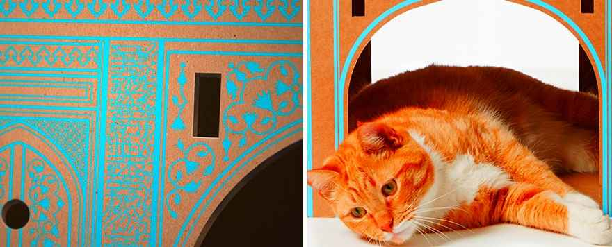 cardboard-cat-houses-india